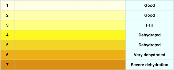 PracticesurvivalCom Health Urine Color Chart